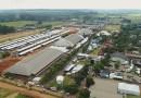 Congresso Brasileiro do Quarto de Milha cresceu 29%, diz ABQM