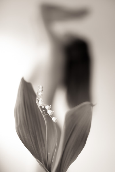 woman silhouette with lily of the valley in the foreground