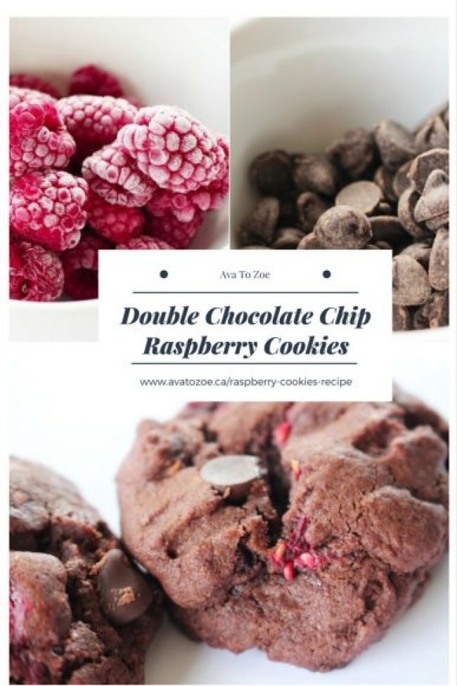 Raspberry Pinterest Image