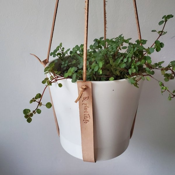 Genuine Leather Hanging Plant Holder - Preorder 2