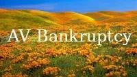 av bankruptcy