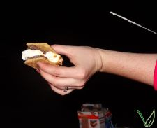 Vegan s'more