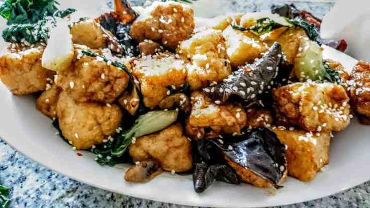 dettaglio Tofu con Cavolo e Funghi Cinesi