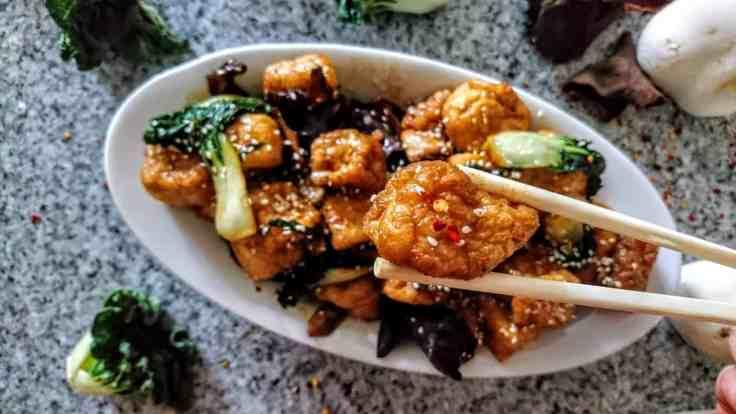 pezzetto di Tofu con Cavolo e Funghi Cinesi