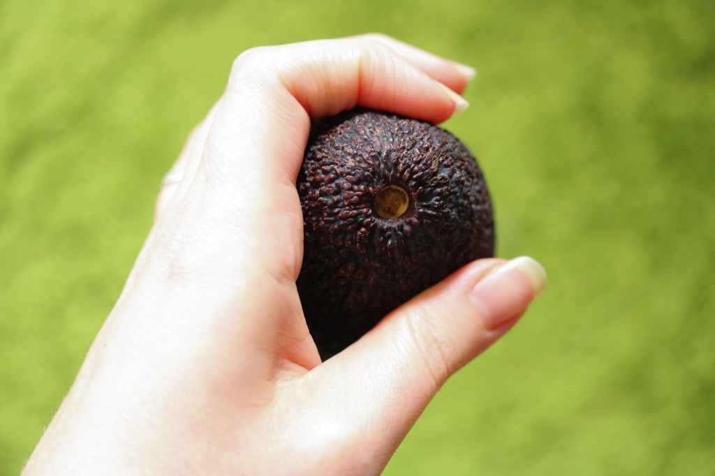 stem ripe avocado how to tell if ready