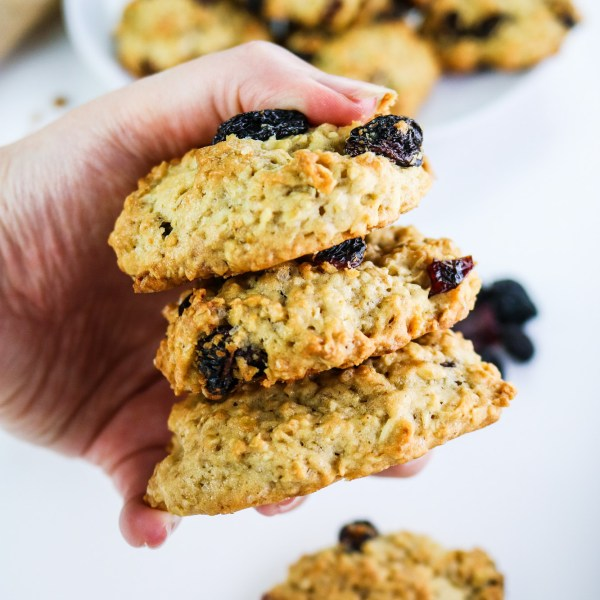 American Style Oat Cookies with Raisin and Cranberry