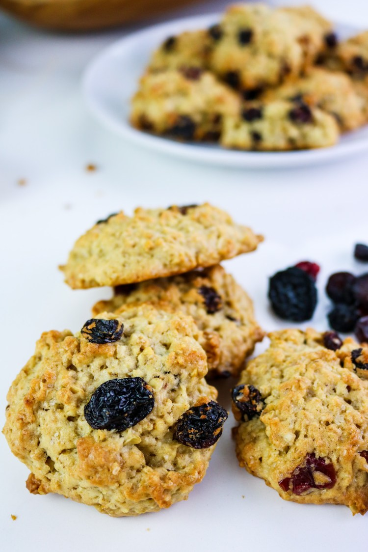 American Style Oat Cookies with Raisin and Cranberry close up