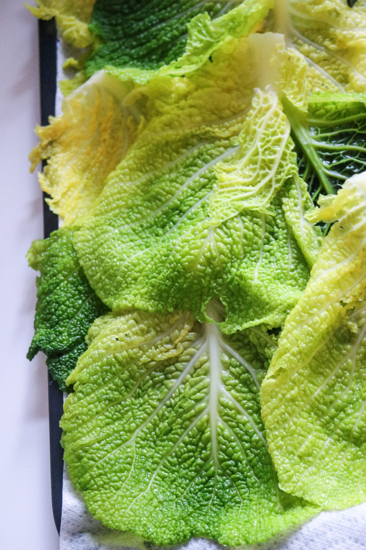 boiled savoy cabbage leaves