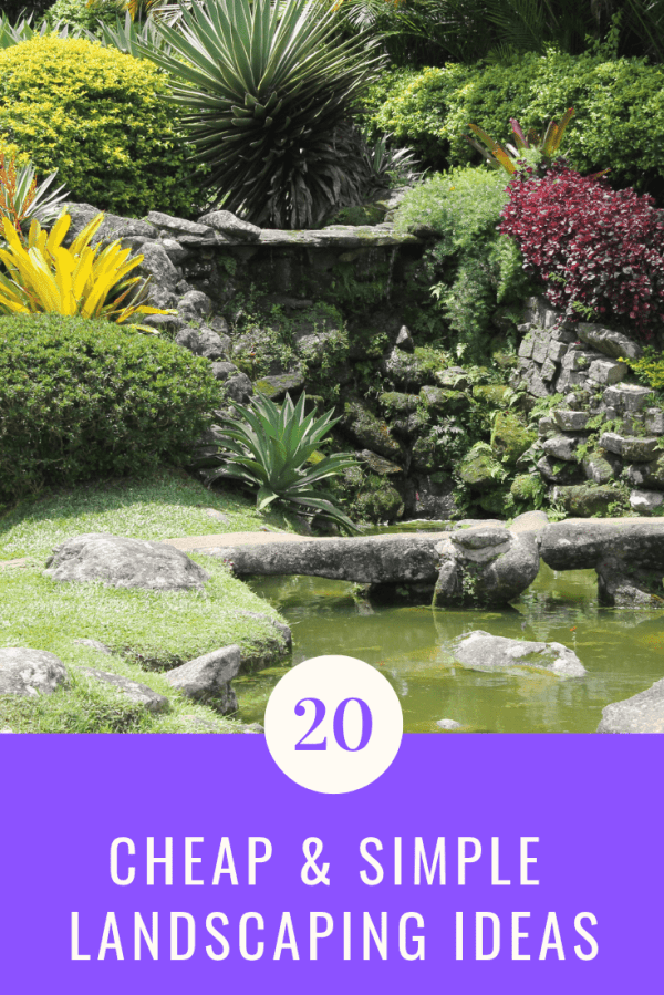 cheap & simple landscaping ideas