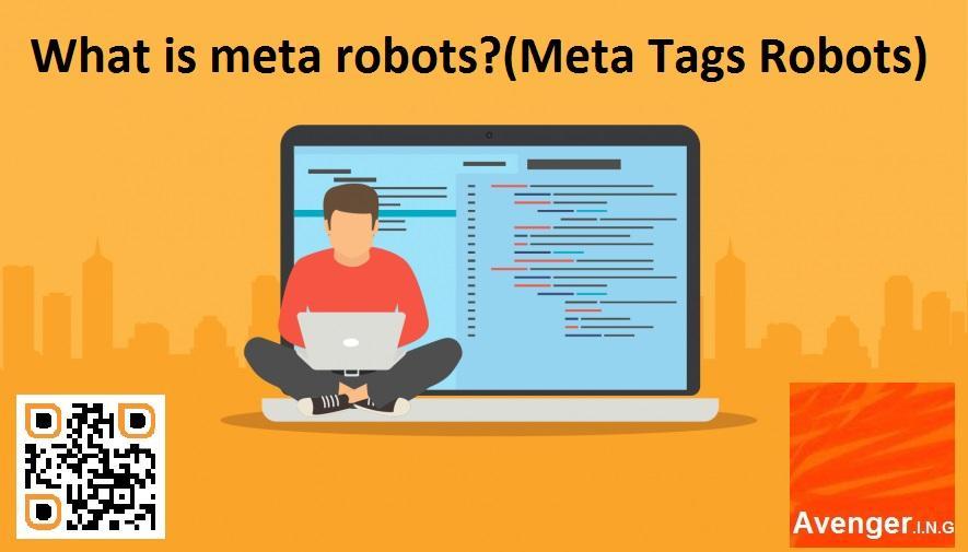 types of robots meta tags