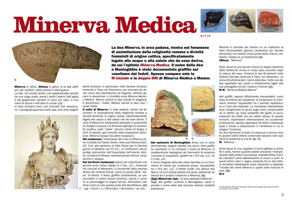 3.Minervamedica