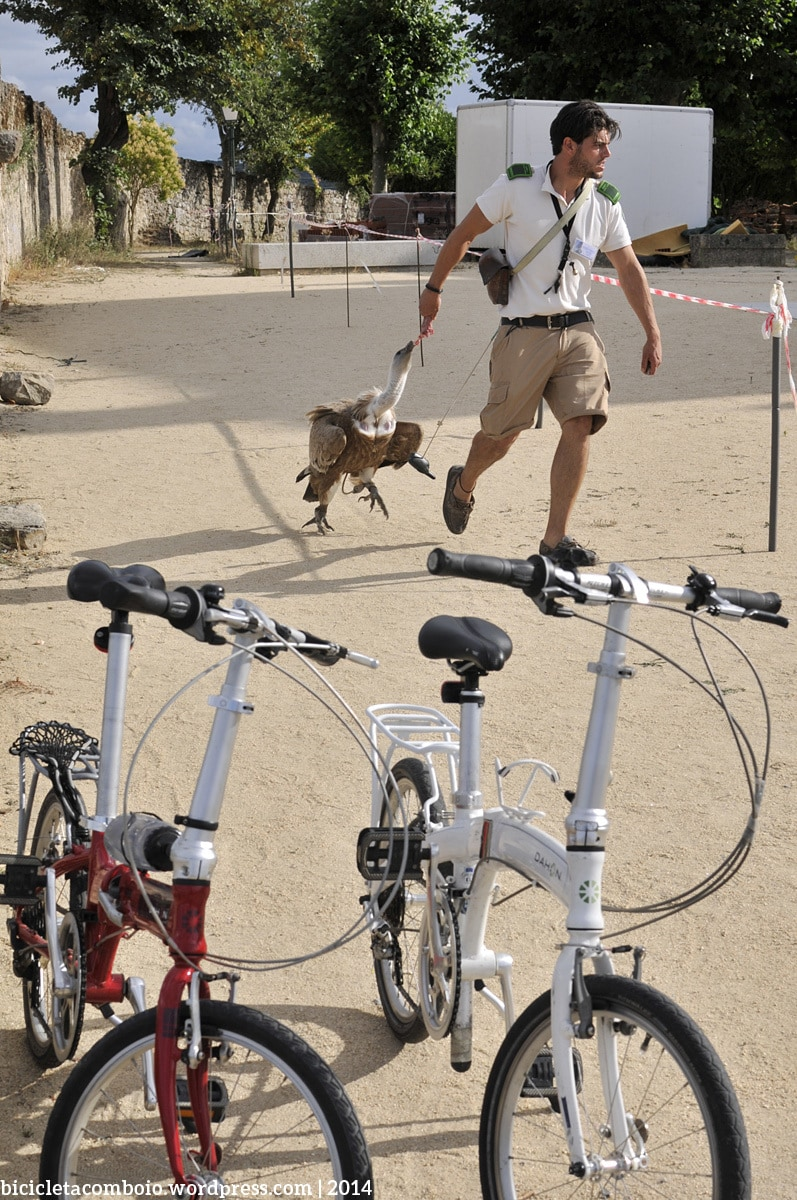 turismo_bicicleta_001