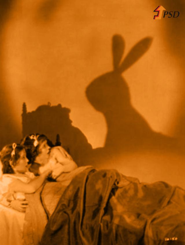 coelho-psd-estorias-de-terror