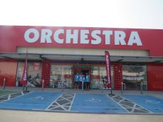 Orchestra (4)
