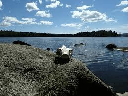 Moxie Bald Lake