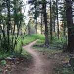 Long Days | Colorado Trail - Average Hiker