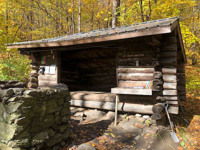 Wiley Shelter