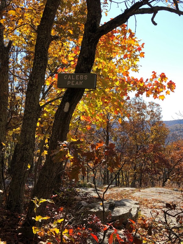 Fall Hike to Caleb's Peak on the Appalachian Trail