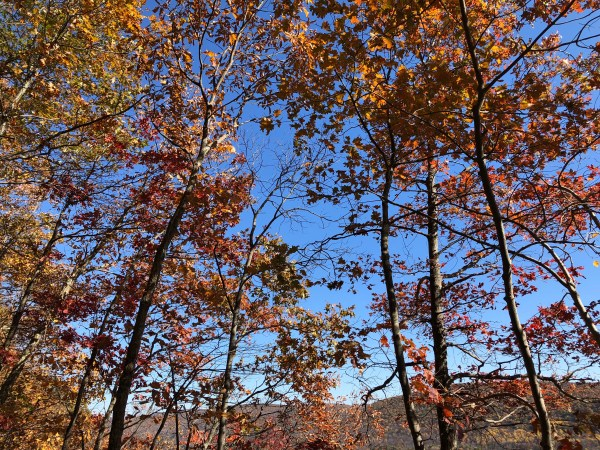 Fall Hiking near St John's Ledges on the Appalachian Trail