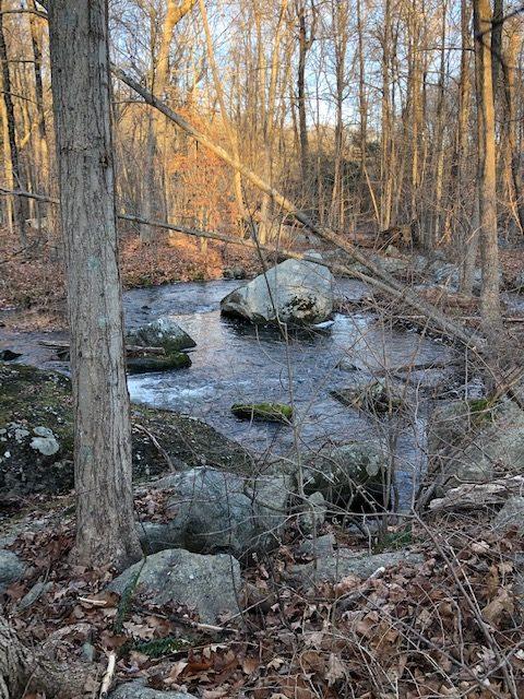 Creek Near Route 55 on the AT