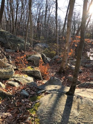 Rocky AT Trail in New York