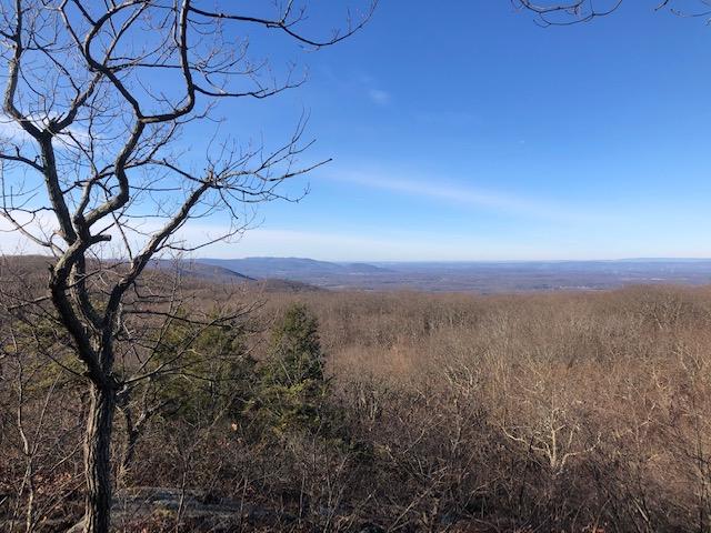 Views Near Mt. Egbert