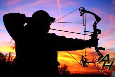 bowhunter hunting bow