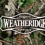 weatheridge-spring
