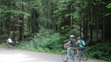 Lower Seymour Conservation Reserve Bike Trails in North Vancouver, BC, Canada – A Guide