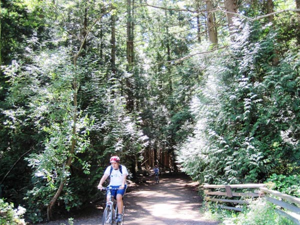 Cyclist on one of the Pacific Spirit Regional Park Bike trails