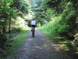 Springboard trail in Belcarra Park