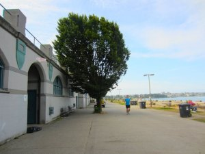Old English Bay Pavilion - Average Joe Cyclist