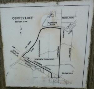 Map of the Osprey Loop dog friendly trail