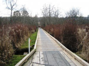 Board walks offer a fun change of pace for cyclists in Deer Lake Park. Deer Lake Park Bike Trails in Burnaby, BC, Canada