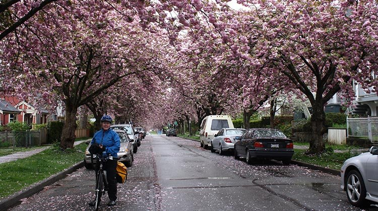 The Amazing Evolution of Vancouver Cycling Infrastructure
