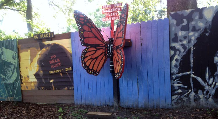 Butterfly wall murals on the Cross Seminole Trail. Another vibrantly creative artwork by Longwood artist, Jeff Sonksen