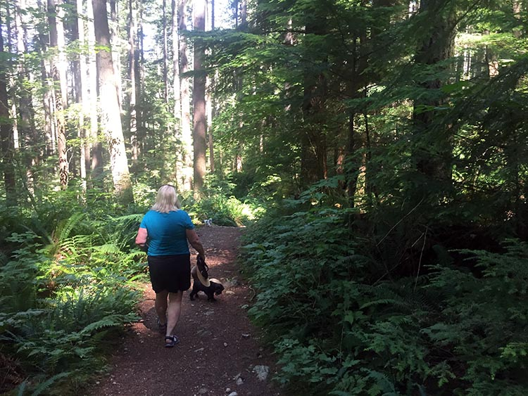 Cycling near Buntzen Lake, British Columbia, Canada. Some parts of the Academy Trail are easy going