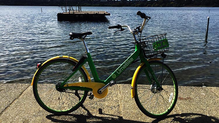 Lime Bikes and Scooters for Shared Transport Options. Here's a Lime bike at Green Lake, Seattle