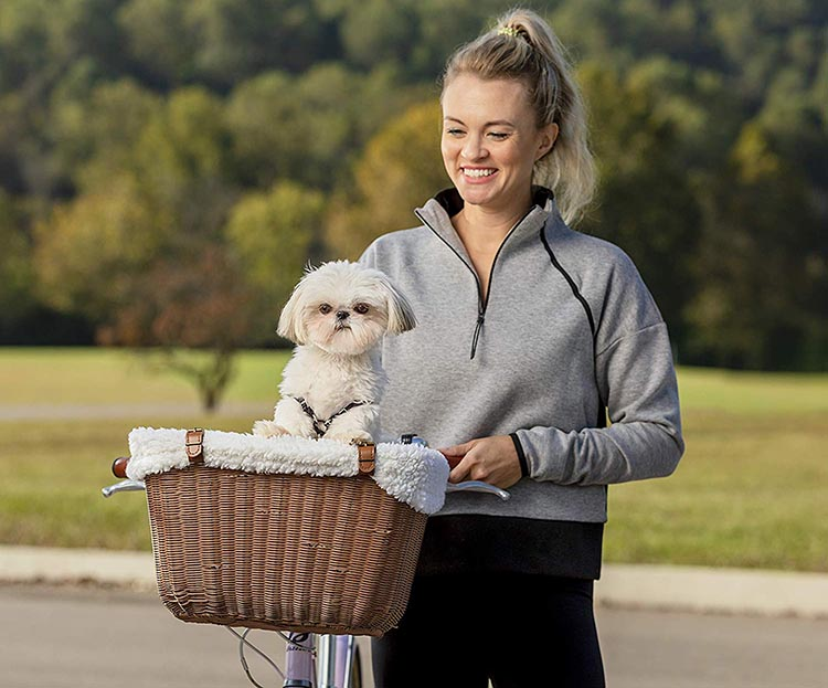 5 of the Best Dog Bike Baskets to Safely Take Your Dog Cycling in 2020. This is the wicker version of our top pick, the Solvit Tagalong. The cute dog is NOT included - you need to supply your own!