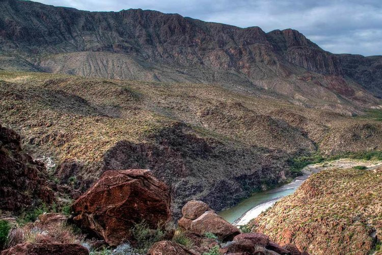 Fresno Divide Loop Trail, Big Bend National Park (TX). Photo by Texas Parks and Wildlife