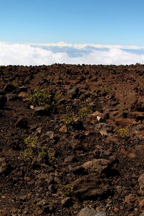 Rockscape at Haleakala Maui