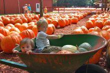 Grandkids at Burt's Pumpkin Farm, Dawsonville, GA