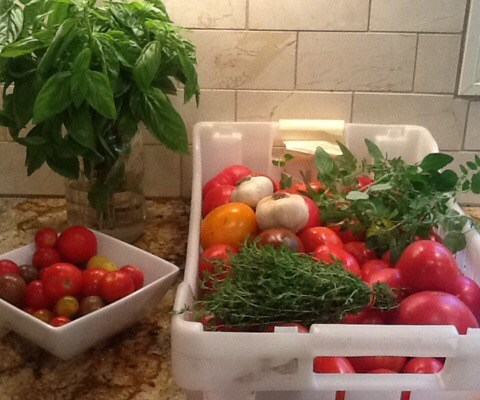 Preserving Flavor for the Winter – Two Tomato Sauces Plus FrozenTomatoes