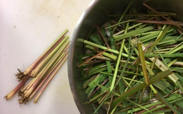 Preserving Lemongrass