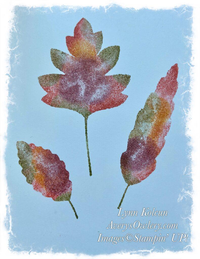 Love of Leaves again