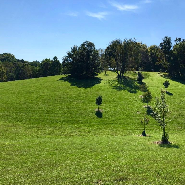 cochran hill dog park cherokee park