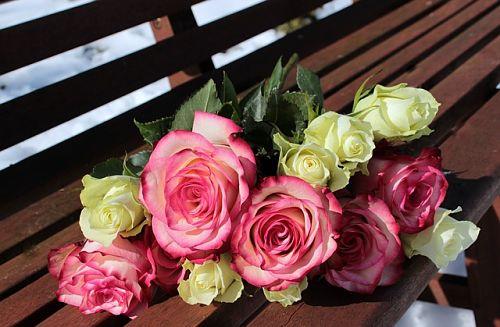 Как укоренить розу из букета: 2 проверенных способа