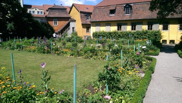 Entspannung nach vielen Informationen im wunderschönen Garten des Goethehauses.