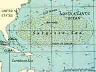 Mar dos Sargaços - I