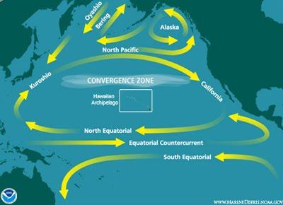 VortexNorth_Pacific_Subtropical_Convergence_Zone